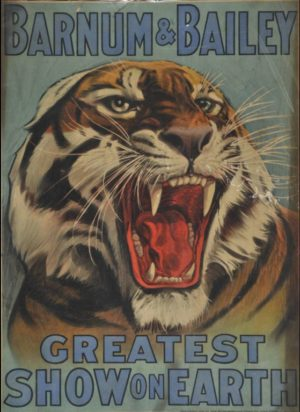 Barnum and Bailey Poster of a tiger